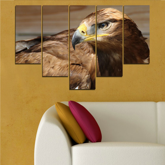 Canvas prints & wall decorative panels - 5 pieces №0615 » Brown, Black, Gray, Dark grey » Birds, Portrait, Eagle Form #6