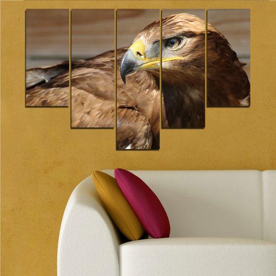 Декоративни панели и картини от канава - от 5 части №0615 » Кафяв, Черен, Сив, Тъмно сив » Птици, Портрет, Орел Form #6