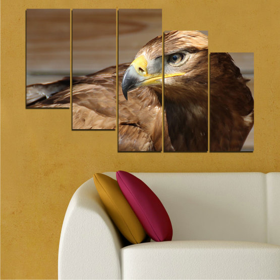 Canvas prints & wall decorative panels - 5 pieces №0615 » Brown, Black, Gray, Dark grey » Birds, Portrait, Eagle Form #7