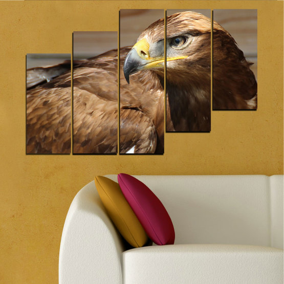 Canvas prints & wall decorative panels - 5 pieces №0615 » Brown, Black, Gray, Dark grey » Birds, Portrait, Eagle Form #8