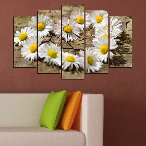 Canvas prints & wall decorative panels - 5 pieces №0619 » Brown, Gray, White » Flowers, Daisy, Heart Form #1