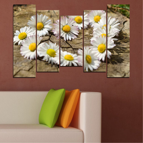 Canvas prints & wall decorative panels - 5 pieces №0619 » Brown, Gray, White » Flowers, Daisy, Heart Form #4