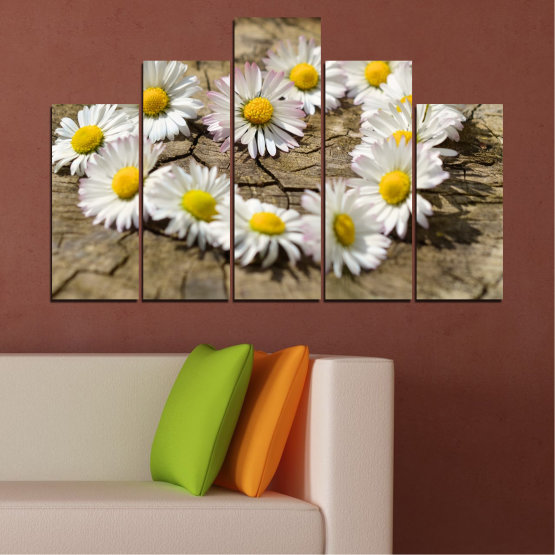 Canvas prints & wall decorative panels - 5 pieces №0619 » Brown, Gray, White » Flowers, Daisy, Heart Form #5