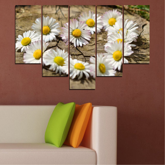 Canvas prints & wall decorative panels - 5 pieces №0619 » Brown, Gray, White » Flowers, Daisy, Heart Form #6