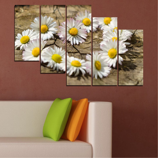 Canvas prints & wall decorative panels - 5 pieces №0619 » Brown, Gray, White » Flowers, Daisy, Heart Form #7