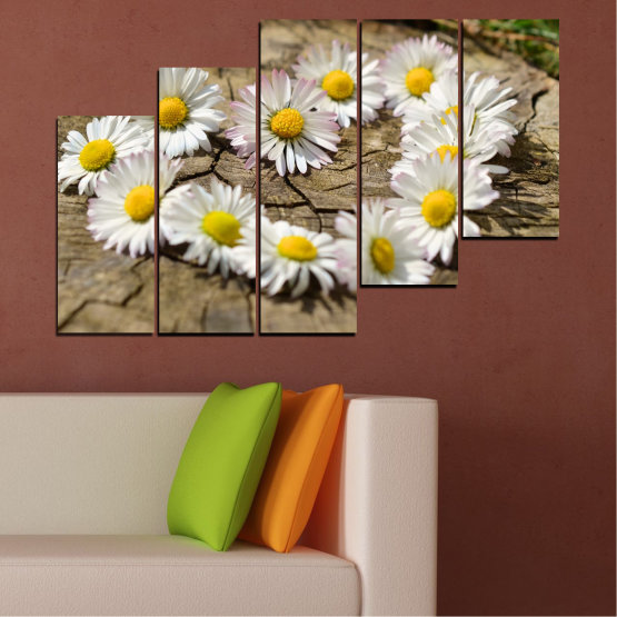 Canvas prints & wall decorative panels - 5 pieces №0619 » Brown, Gray, White » Flowers, Daisy, Heart Form #8