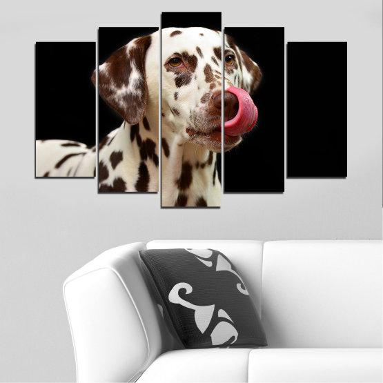 Декоративни панели и картини от канава - от 5 части №0639 » Кафяв, Черен, Сив » Животни, Куче, Далматинец Form #1