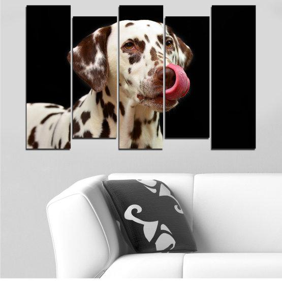 Декоративни панели и картини от канава - от 5 части №0639 » Кафяв, Черен, Сив » Животни, Куче, Далматинец Form #3