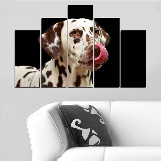 Декоративни панели и картини от канава - от 5 части №0639 » Кафяв, Черен, Сив » Животни, Куче, Далматинец Form #5