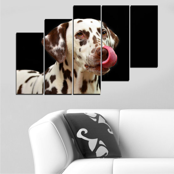 Декоративни панели и картини от канава - от 5 части №0639 » Кафяв, Черен, Сив » Животни, Куче, Далматинец Form #8