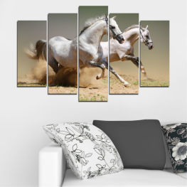 Animal, Horse, Portrait » Brown, Gray, Beige, Dark grey