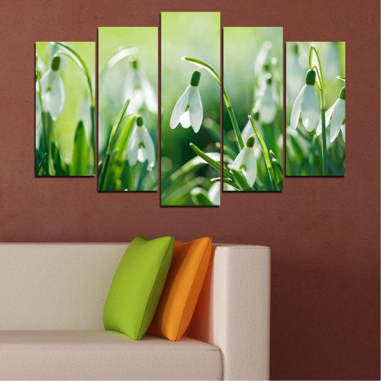 Декоративни панели и картини от канава - от 5 части №0669 » Зелен, Сив, Бежов » Природа, Цветя, Пролет, Кокиче Form #1