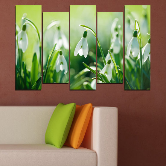 Canvas prints & wall decorative panels - 5 pieces №0669 » Green, Gray, Beige » Flowers, Nature, Spring, Galanthus Form #3