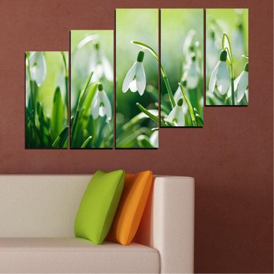 Декоративни панели и картини от канава - от 5 части №0669 » Зелен, Сив, Бежов » Природа, Цветя, Пролет, Кокиче Form #8