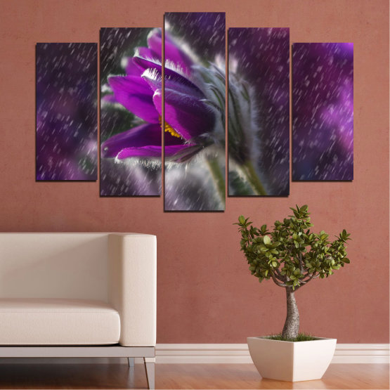 Canvas prints & wall decorative panels - 5 pieces №0694 » Purple, Black, Gray, Dark grey » Flowers, Rain, Spring, Pasque flower Form #1