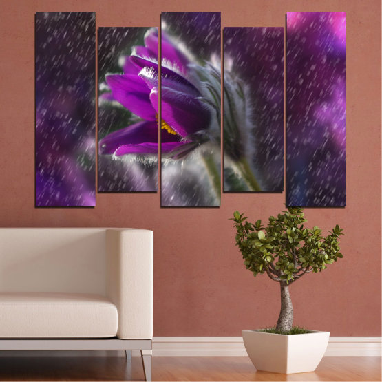 Canvas prints & wall decorative panels - 5 pieces №0694 » Purple, Black, Gray, Dark grey » Flowers, Rain, Spring, Pasque flower Form #3