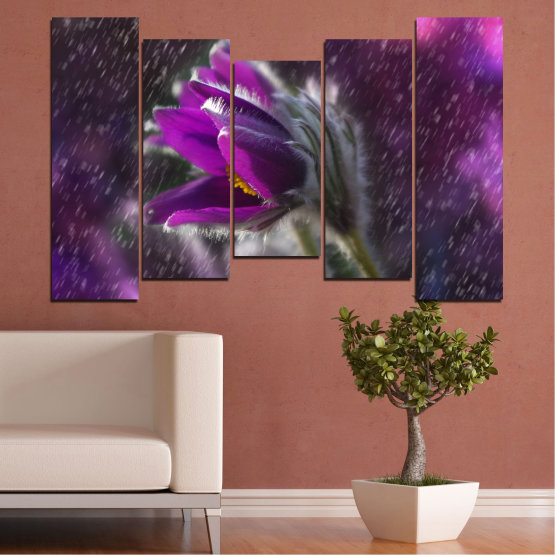 Canvas prints & wall decorative panels - 5 pieces №0694 » Purple, Black, Gray, Dark grey » Flowers, Rain, Spring, Pasque flower Form #4