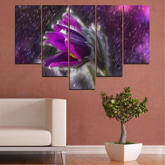 Canvas prints & wall decorative panels - 5 pieces №0694 » Purple, Black, Gray, Dark grey » Flowers, Rain, Spring, Pasque flower Form #6