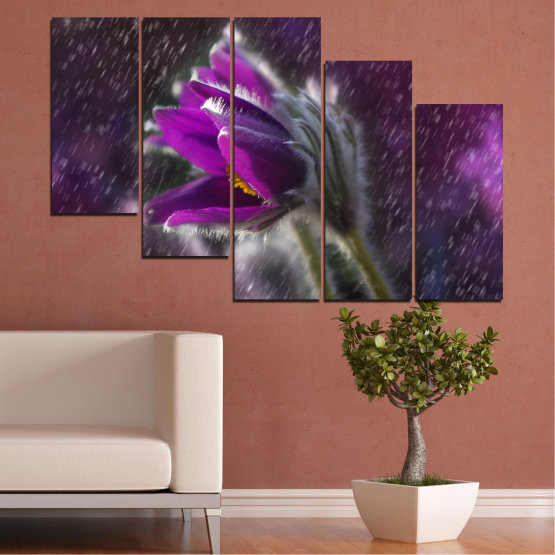 Canvas prints & wall decorative panels - 5 pieces №0694 » Purple, Black, Gray, Dark grey » Flowers, Rain, Spring, Pasque flower Form #7