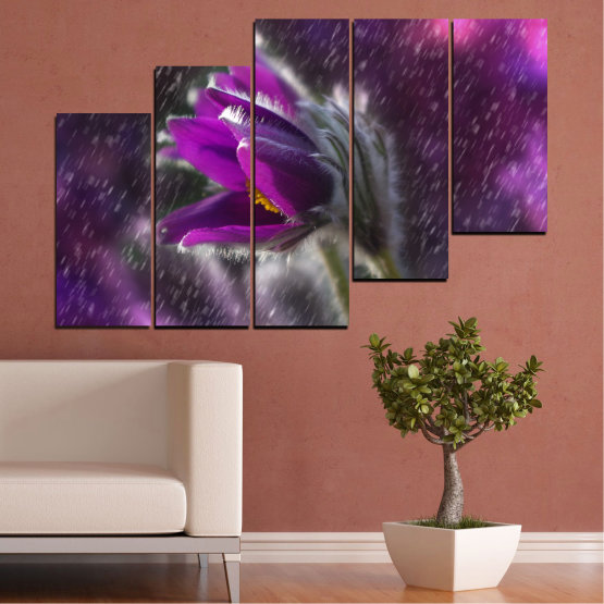 Canvas prints & wall decorative panels - 5 pieces №0694 » Purple, Black, Gray, Dark grey » Flowers, Rain, Spring, Pasque flower Form #8