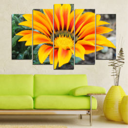 Spring, Color accent, Gerbera » Yellow, Orange, Black, Gray, Dark grey