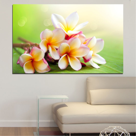 Canvas prints & wall decorative panels - 1 piece №0017 » Green, Gray, White, Beige » Flowers, Bouquet, Fresh, Plumeria Form #1