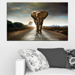 Animal, Road, Elephant » Brown, Black, Gray, Dark grey