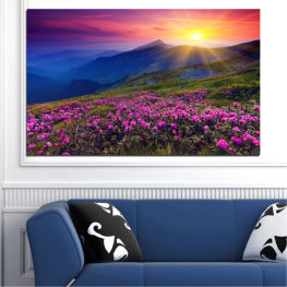 Flowers, Nature, Mountain, Sun, Sunrise, Field » Pink, Purple, Blue, Yellow, Black, Dark grey