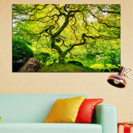 Nature, Forest, Tree » Green, Yellow, Black