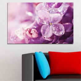 Flowers, Lilac, Drops » Purple, Gray, Milky pink, Dark grey