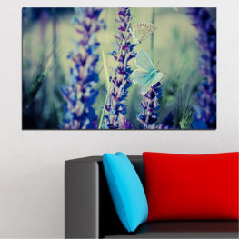 Nature, Flowers, Butterfly, Lavender » Purple, Blue, Black, Gray, Dark grey