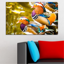 Feng shui, Mandarin ducks, Birds » Pink, Turquoise, Green, Yellow, Orange, Brown, Black, Beige
