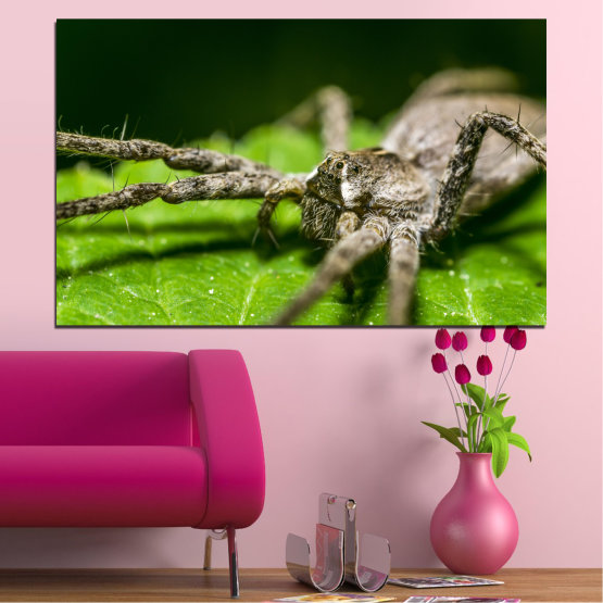 Canvas prints & wall decorative panels - 1 piece №0200 » Green, Black, Gray, Dark grey » Nature, Animal, Spider Form #1