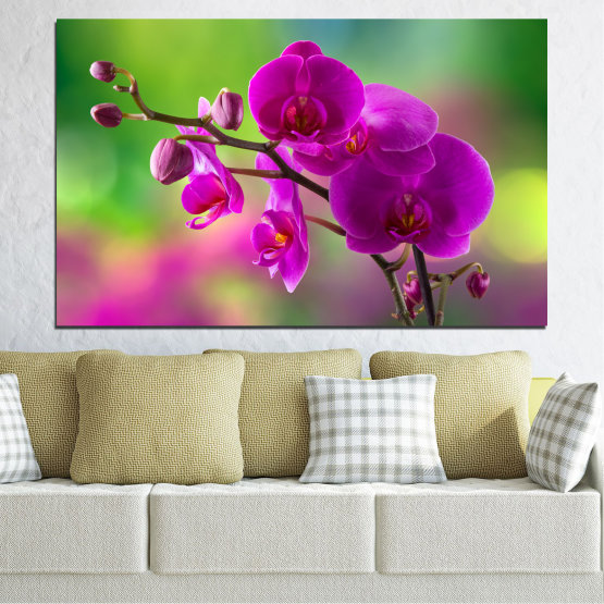 Canvas prints & wall decorative panels - 1 piece №0202 » Pink, Purple, Green, Gray, Dark grey » Flowers, Orchid, Bouquet Form #1