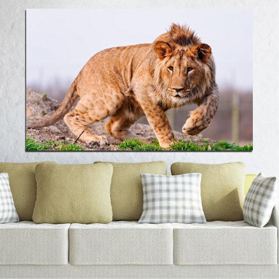 Canvas prints & wall decorative panels - 1 piece №0295 » Orange, Brown, Gray, White, Beige » Animal, Portrait, Lion Form #1