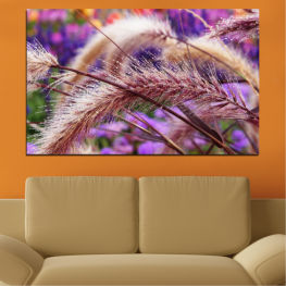 Nature, Autumn, Wheatear » Purple, Brown, Gray, Dark grey