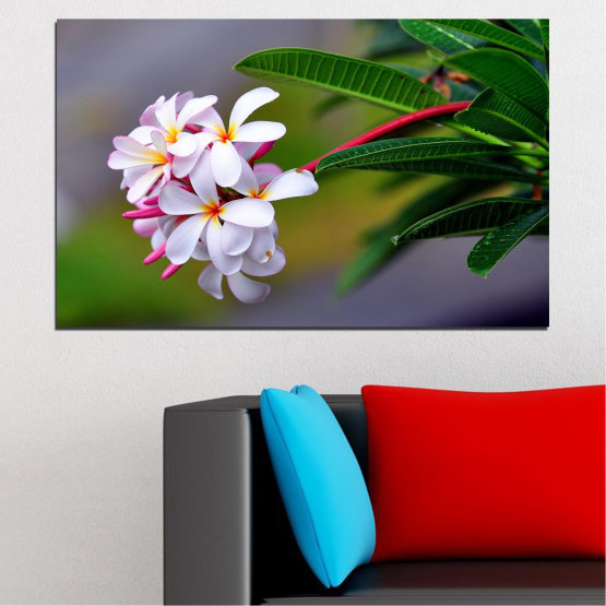 Canvas prints & wall decorative panels - 1 piece №0322 » Green, Black, Gray, Dark grey » Flowers, Fresh, Plumeria Form #1