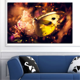 Flowers, Animal, Butterfly » Red, Orange, Brown, Black